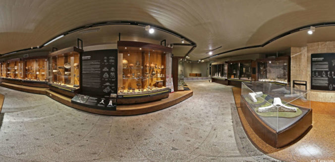 Virtual tour del Museo Archeologico